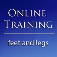 Online Class: Feet and Legs